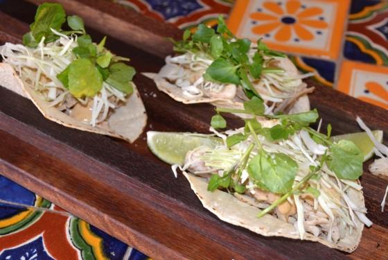 Taco de Pollo at El Topo