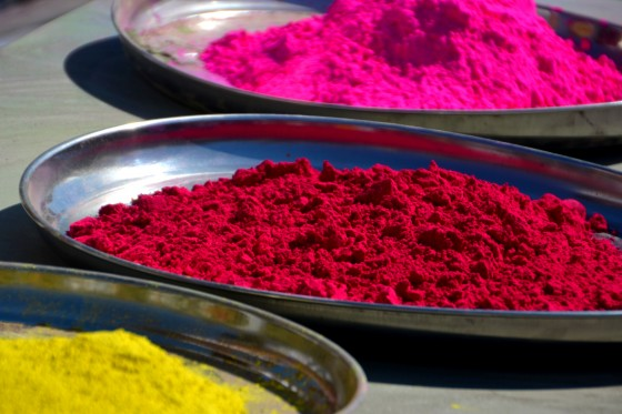 holi coloured powders