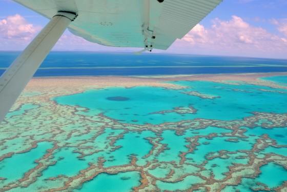 Whitsundays wonder, Hardy Reef