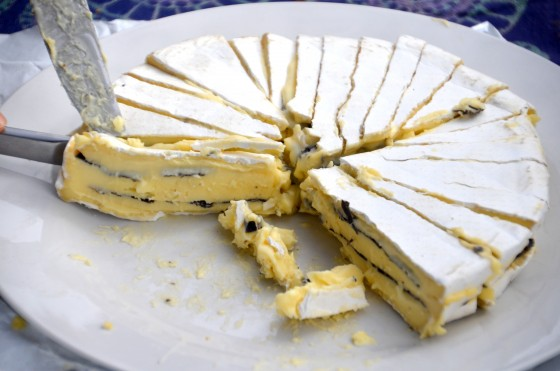 Brie spiked with truffles