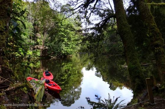 kayaks on the Savage River