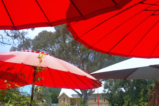 Under the umbrellas at 29 Nine 99 Yum Cha, Rylstone