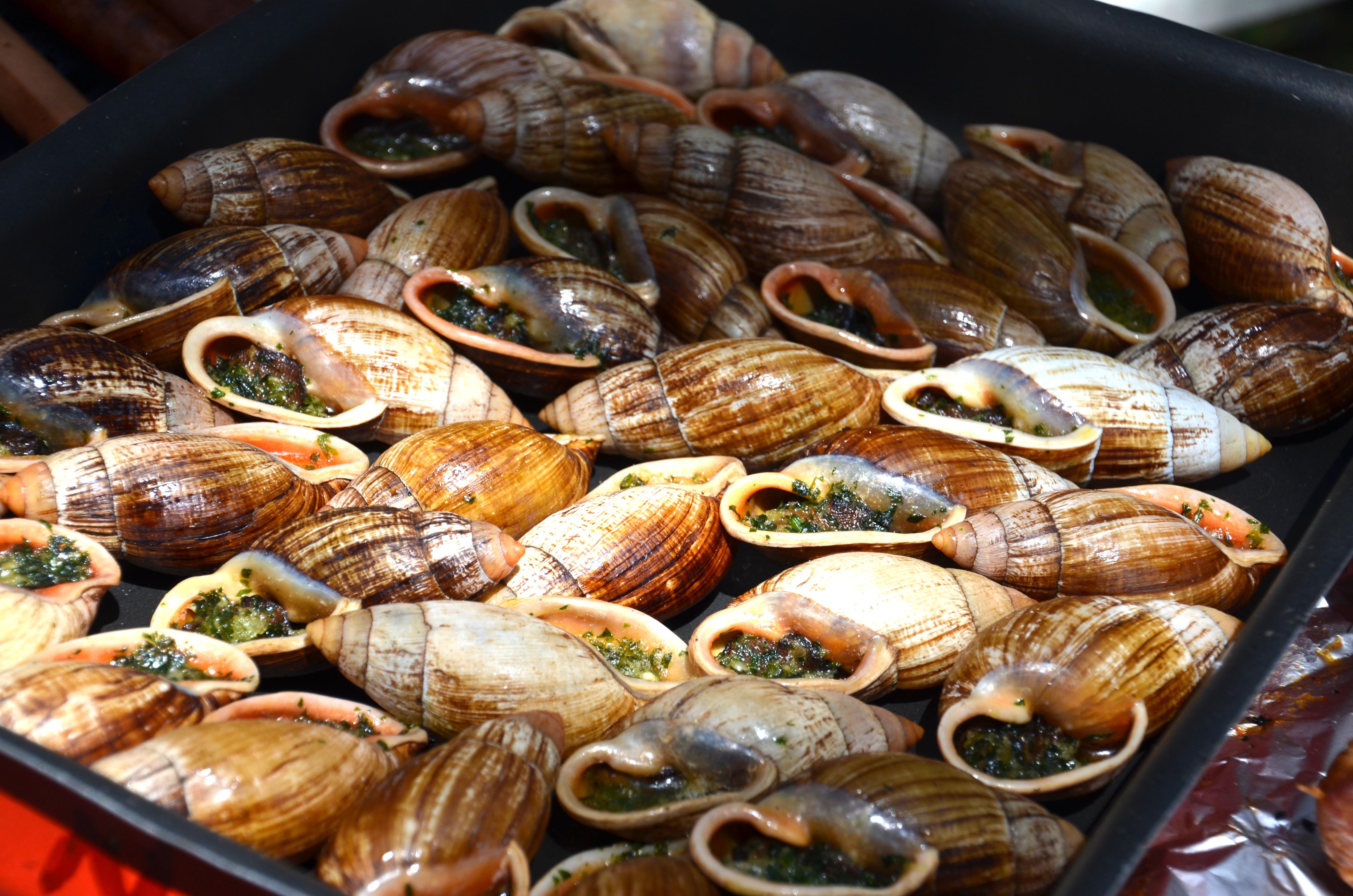 Escargot Buttery BBQ escagot on the Beach, ISle of Pines