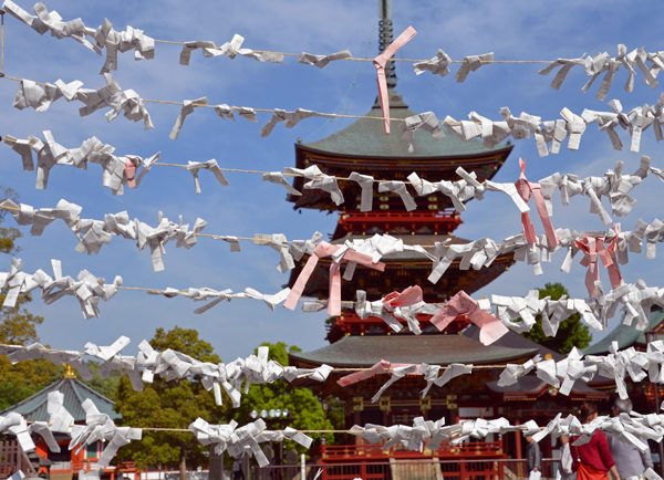 Fortunes at Shinsyouji Temple, Narita