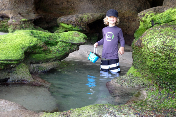 cooling off in the rockpools at at Caves Beach