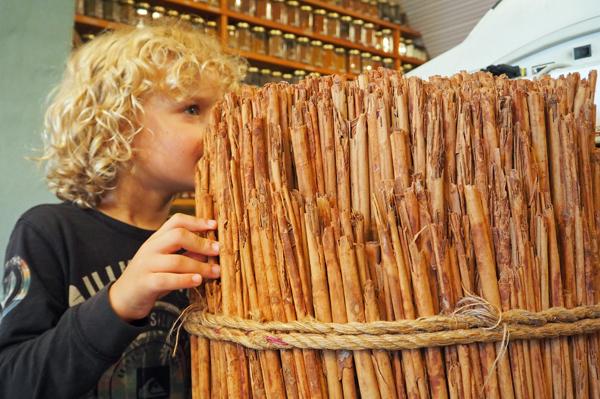 cinnamon at Herbies Spices