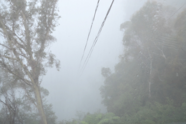 """into the mist on the """"Scenic"""" cableway at Scenic World"""