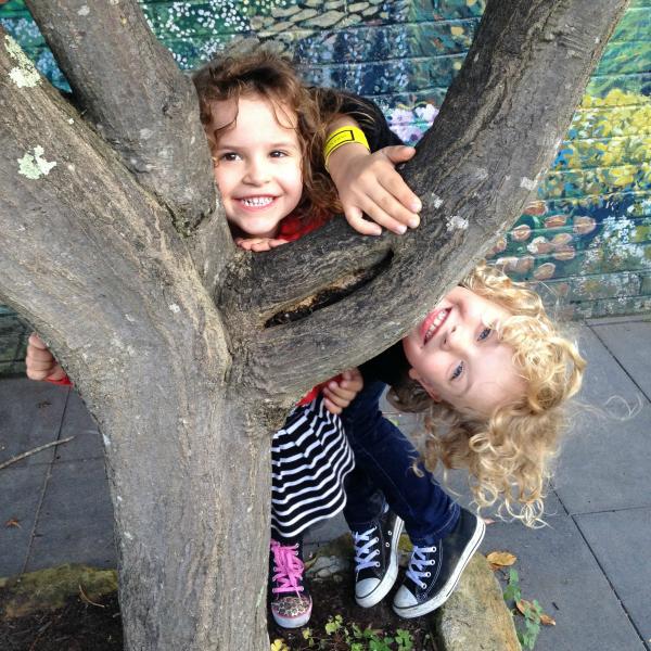 Sugared-up sibling at Leura