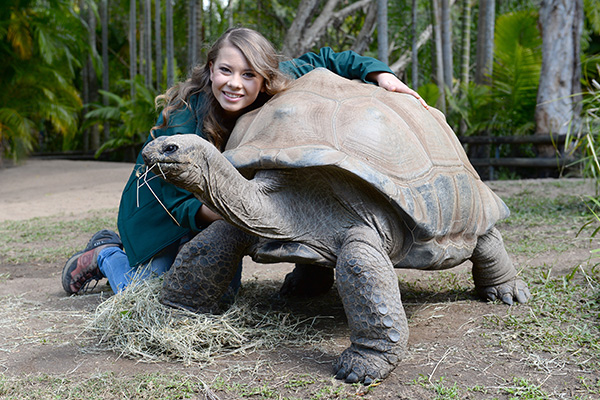 Bindi Irwin with a tortoise at Australia Zoo
