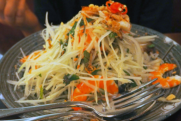 green papaya salad at Red Lantern on Riley