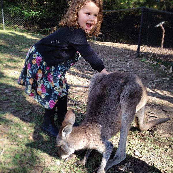 Sugarpuff molesting the marsupials at Australian Reptile Park