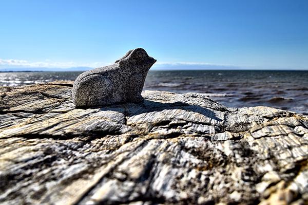 stone frog at Meoto Iwa (the wedded rocks) in Futami.