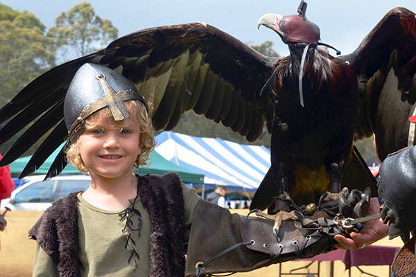 Raffles hold s a wedge tailed eagle at St Ives Medieval Faire