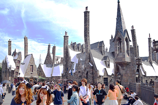 Wild about the Wizarding World of Harry Potter