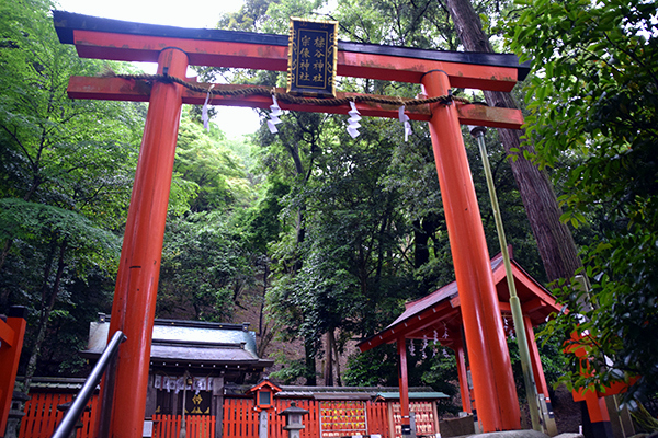 Entry to Arashiyama Monkey Park