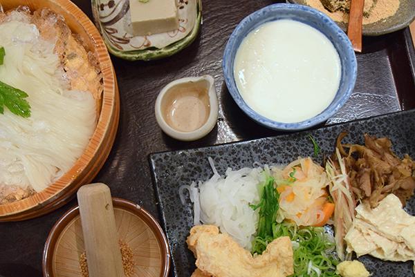 Arashiyama Tofu