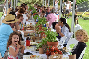 The D'VineRipe Longest Tomato Lunch, Sydney Royal Botanic Garden
