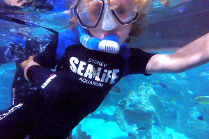Raffles at SEALIFE Sydney Aqaurium's Shark reef Snorkel