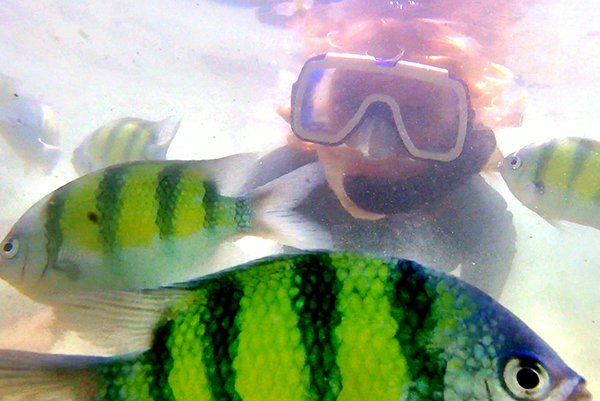 Snorkelling amongst the tropical fish off Koh Khai Nok