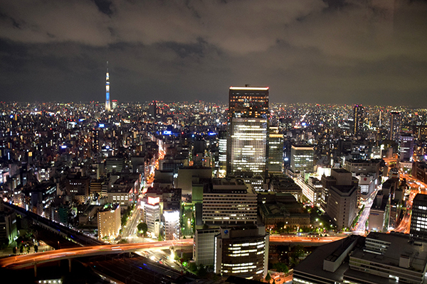 The view of Tokyo from our suite at Aman Tokyo