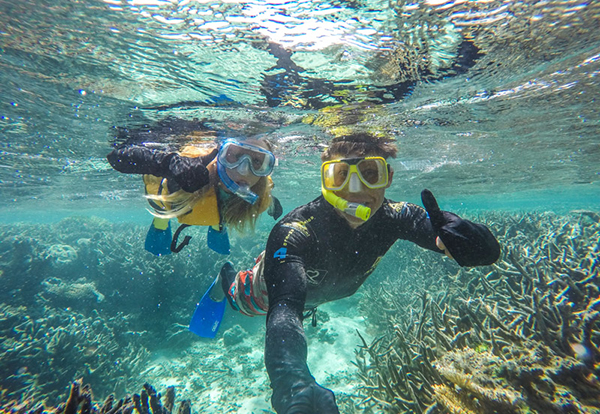 ytravelblog Kalyra and Craig Makepeace snorkelling on the Great Barrier Reef - Pic courtesy YtravelBlog