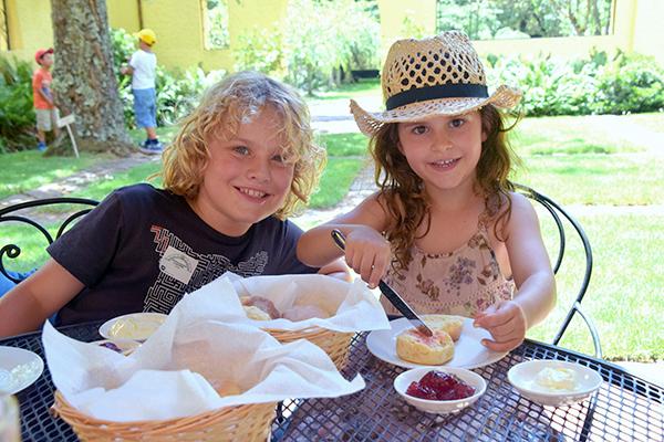 Devonshire Tea at Everglades Gardens, Leura