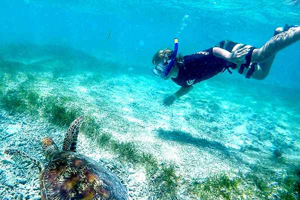 snorkelling with turtles on Amedee Island: Carnival Spirit by kids
