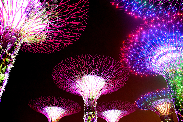 Singapore by kids: Gardens by the Bay