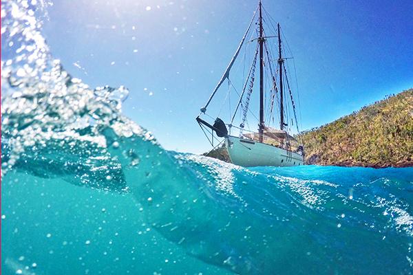 Snorkelling off the Derwent Hunter Whistundays