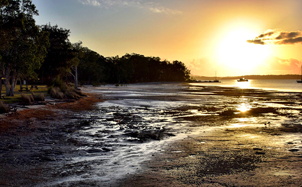 Sunrise at BIG4 KOala Shores