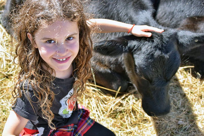 Petting zoo at Koonya Garlic FestivalPetting zoo at Koonya Garlic Festival