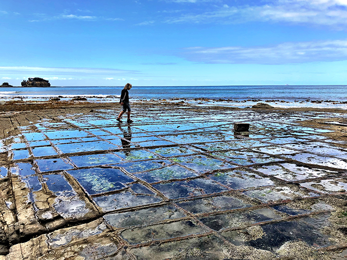 The Tessellated Pavement Tasman Peninsula with kids