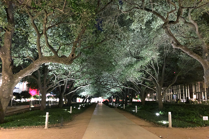 48-Hours in Houston with kids; Discovery Green is gorgeous day and night