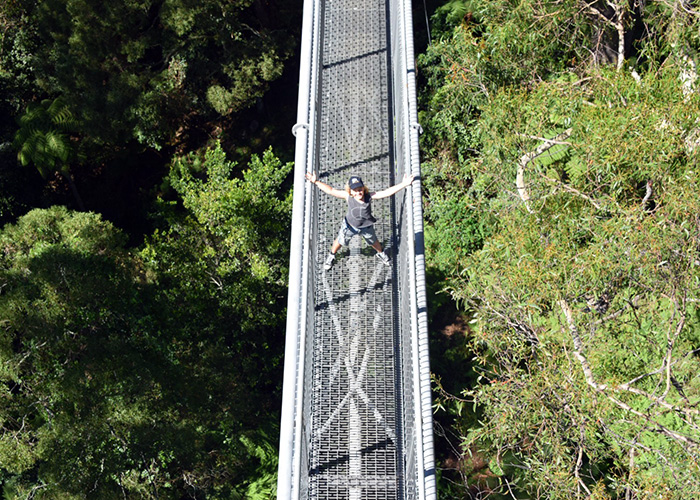 Treetop Adventures Illawarra Fly with kids