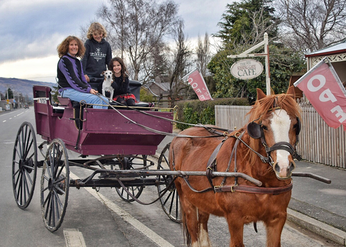 Horse and cart MIddlemarch