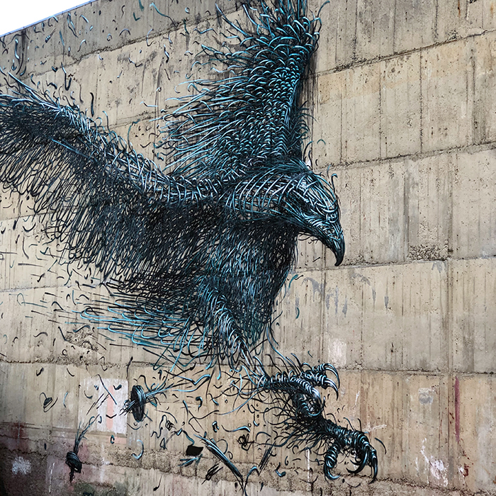 The Dunedin Street Art Trail
