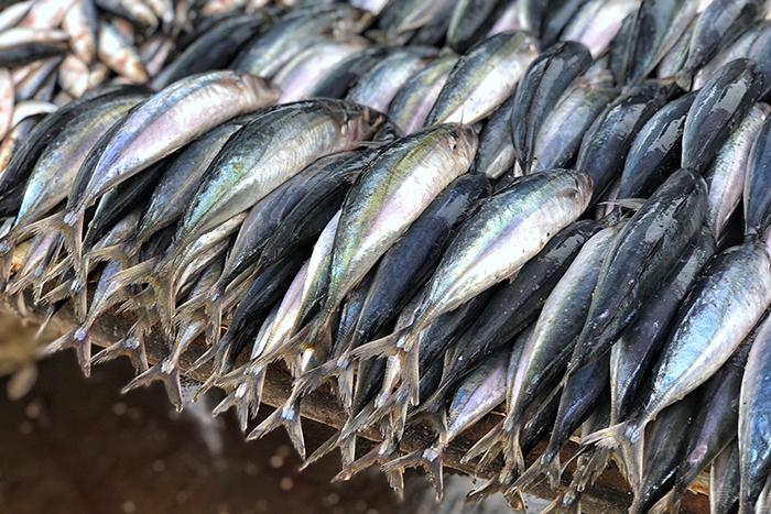 Negombo Morning Market