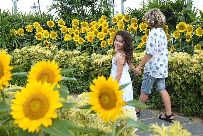 Kids in the Sunflower Garden at Singapore Changi Airport