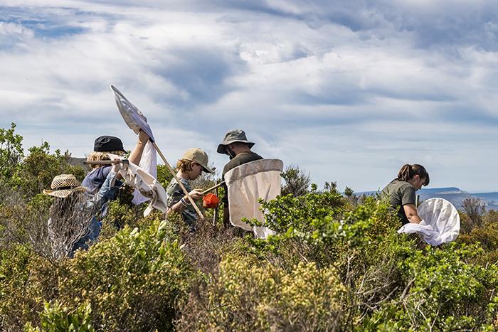 Grootbos Botanical Safari