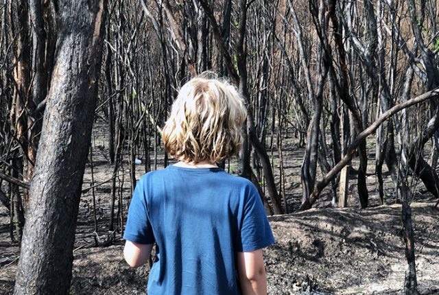 21 things kids can do to help Australia bushfire recovery