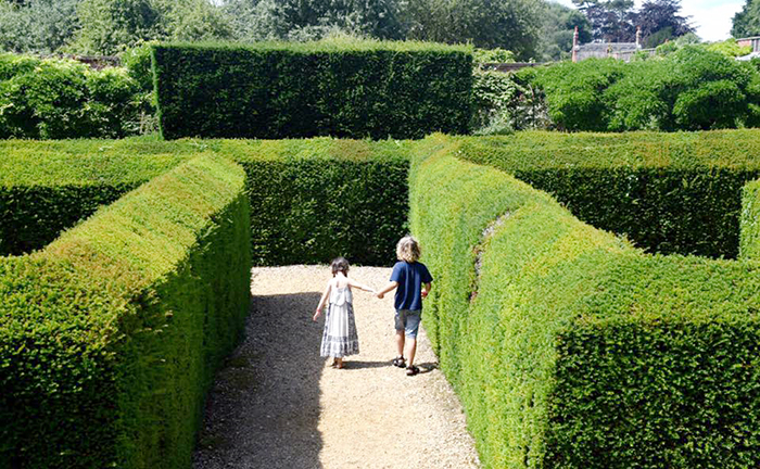 Kids in the Hedge maze at Somerleyton Hall