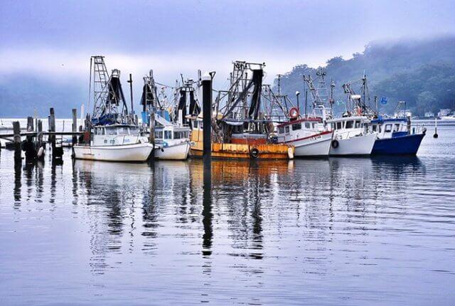 Trawlers at Brooklyn, Hawkesbury River