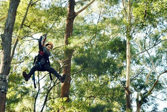 TreeTops Coffs Harbour with kids