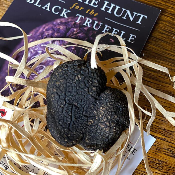Australian Truffle Traders heart shaped black Perigord Truffle