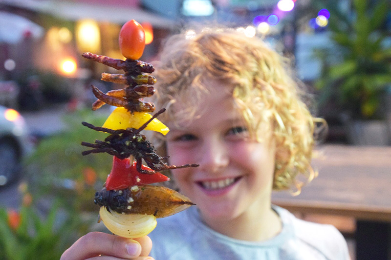 What to expect from Cambodian Cuisine: Tarantula kebab at Bug Cafe
